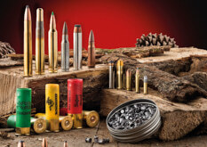 Photo Munitions & rechargement