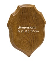 Photo Trophy oak escutcheon
