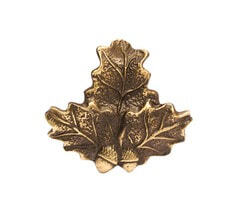 Photo Trophy Oak Leaf