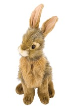 Photo Hare Plush