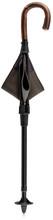 Photo Umbrella seat cane