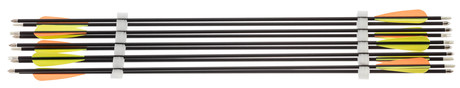 Photo Pack of 10 carbon arrows - Spine 500 - Shoot Again