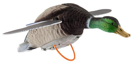 Photo Appelant canard ailes tournantes