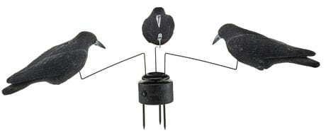 Photo Crows carousel