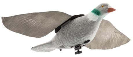 Photo Calling Pigeon Super flap