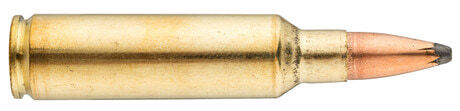 Photo Munition grande chasse Winchester Cal. 300 WSM