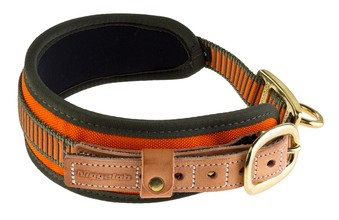Photo Neon Orange Blood Dog Collar - Niggeloh