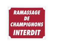 Photo Panneau ''Ramassage de champignons interdit'' 30 x 25 cm