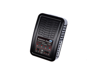 LiPo / LiFe Auto Stop Battery Charger