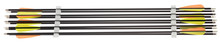 Pack of 10 carbon arrows - Spine 500 - Shoot Again
