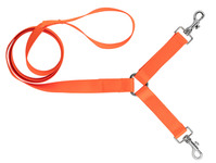 Photo Laisse 1,30 m sangle nylon 2 chiens orange fluo - Country