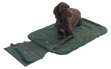 Photo Tapis de transport pour chien