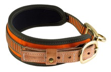 Neon Orange Blood Dog Collar - NiggelohNeon Orange Blood Dog Collar - Niggeloh