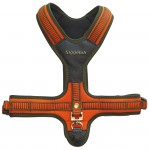 Orange Neoprene Harness for Dog - Niggeloh