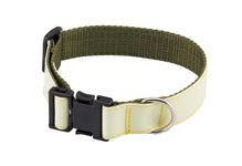 Photo Luminescent collar for dog - Country