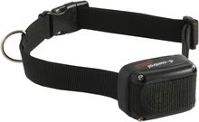 Additional D-control collar - DogTrace