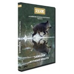 Seasons DVD - Hunting Video - Wild boars myths and realities