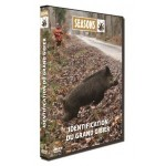 DVD Seasons - Hunting Video - Large Game Identification