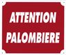 Photo A50800-ATTENTION PALOMBIERE